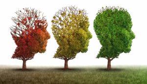 Dr. Oz Investigates the Bredesen Protocol – Breakthrough Alzheimer's Research